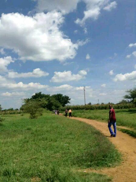 一个女孩不一样的非洲之旅