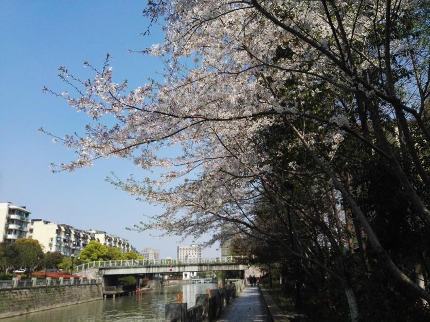 京杭古运河好玩儿吗