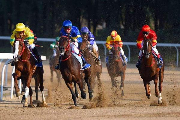 2020武汉赛马节的日期定在10月17日-25日