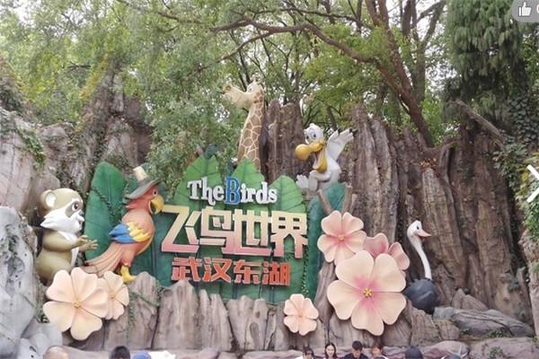 2020东湖飞鸟世界应届中高考考生有优惠