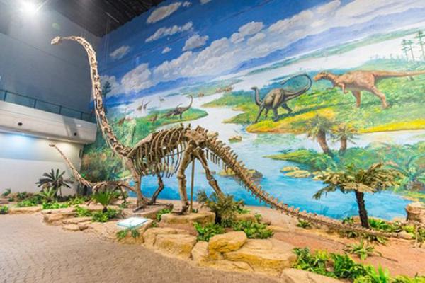 北京恐龙博物馆地址及门票价格介绍