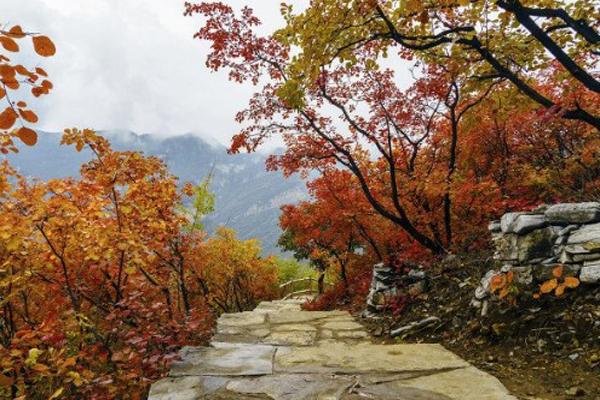 北京红叶节及古北水镇红叶祭活动详情
