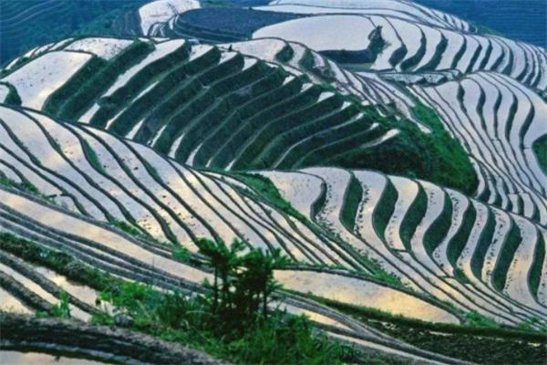 桂林十大最值得去的旅游景点排行榜